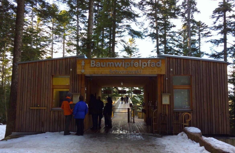 Baumwipfelpfad Bad Wildbad: Eingang