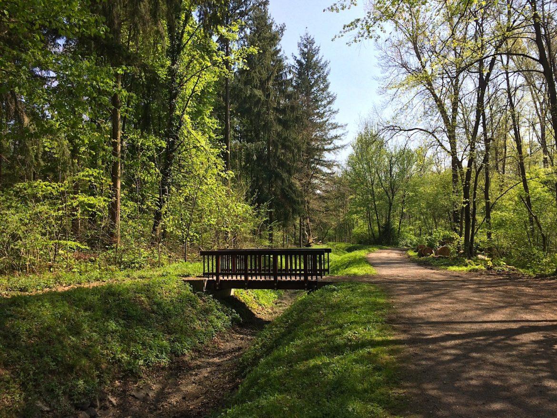 Eine von mehrere Holzbrücken am Scheidgraben