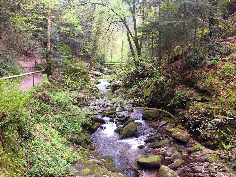 Brücke und Ende bzw. Start des Wasserfall-Rundwegs kurz vorm Bütthof