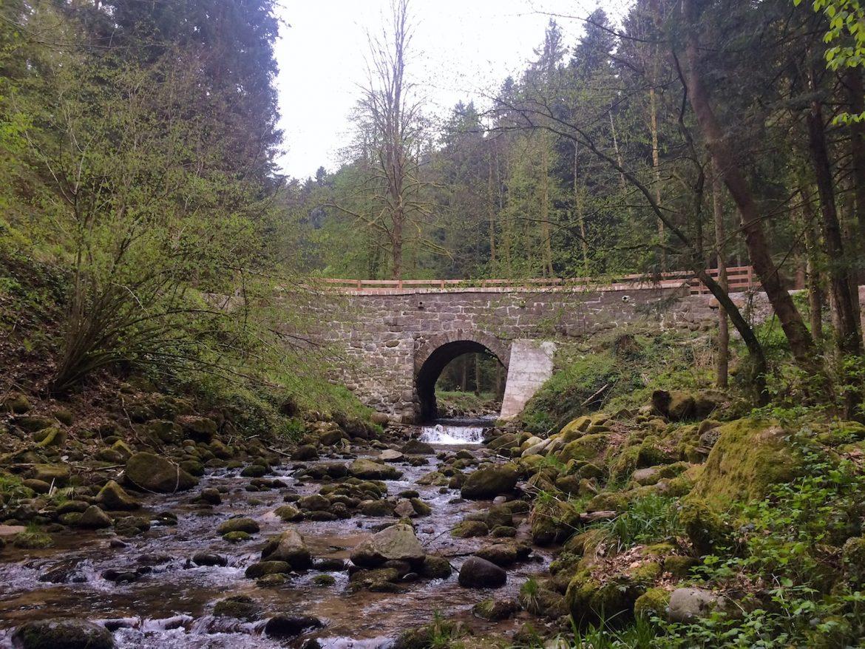 Brücke oberhalb des Bütthofs