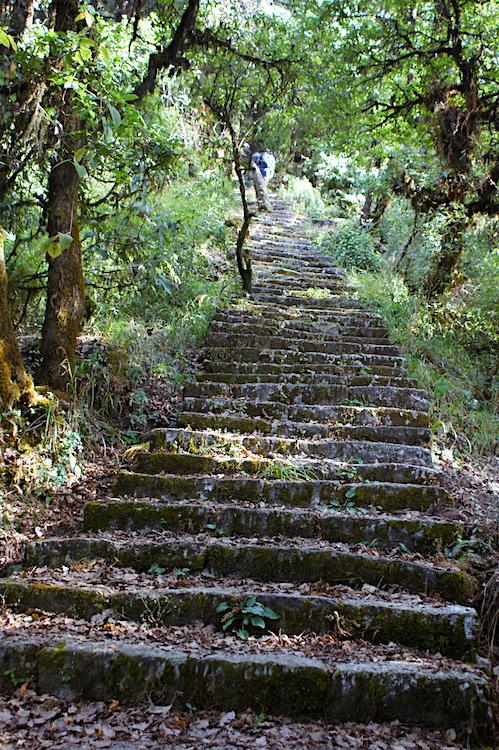 Shivapuri Nagarjun National Park Treppen