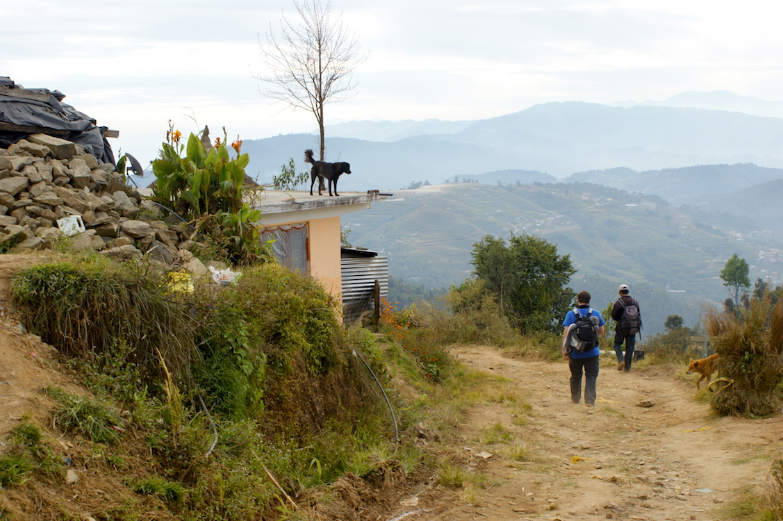 Trekking with dogs in Nepal, Himalaya, Shivapuri National Park