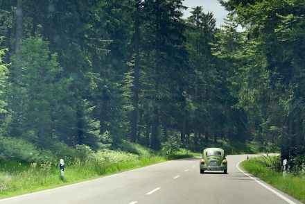 Schwarzwald-Roadtrip: VW Käfer (Black Forest)