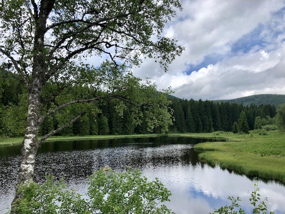 Schluchsee (Black Forest)