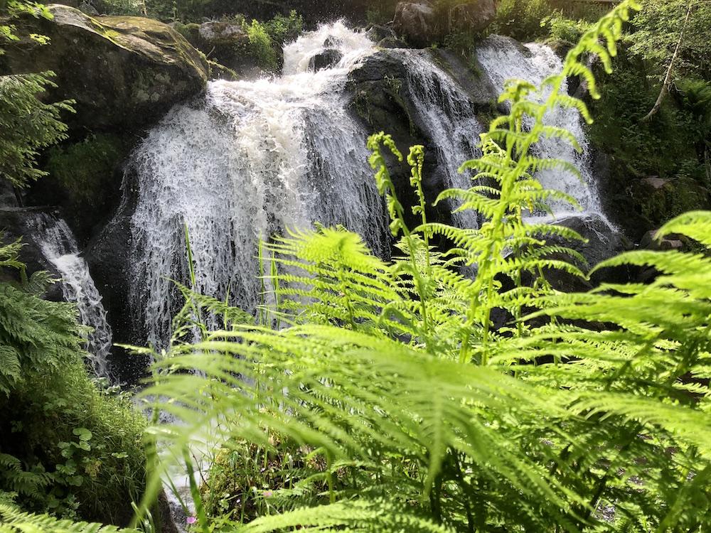 Trierer Wasserfälle