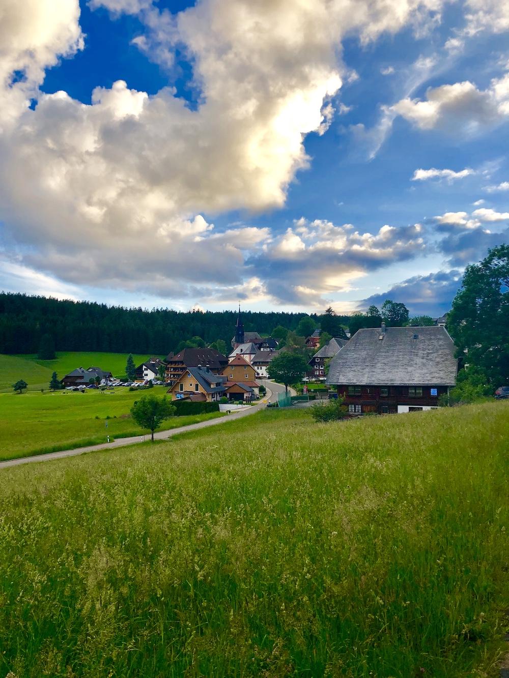 Walda (Black Forest)