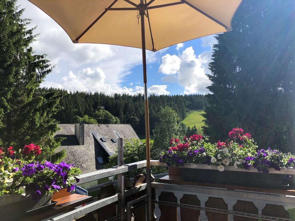 Waldau: Hotel zur Traube (Black Forest)